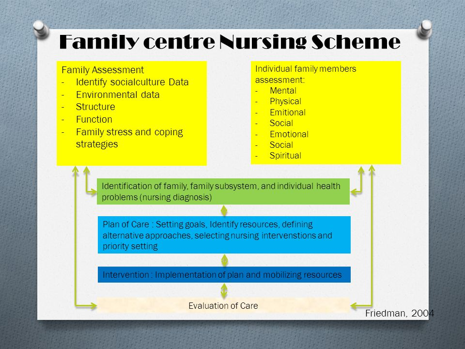 Family centre Nursing Scheme Family Assessment -Identify socialculture Data -Environmental data -Structure -Function -Family stress and coping strateg