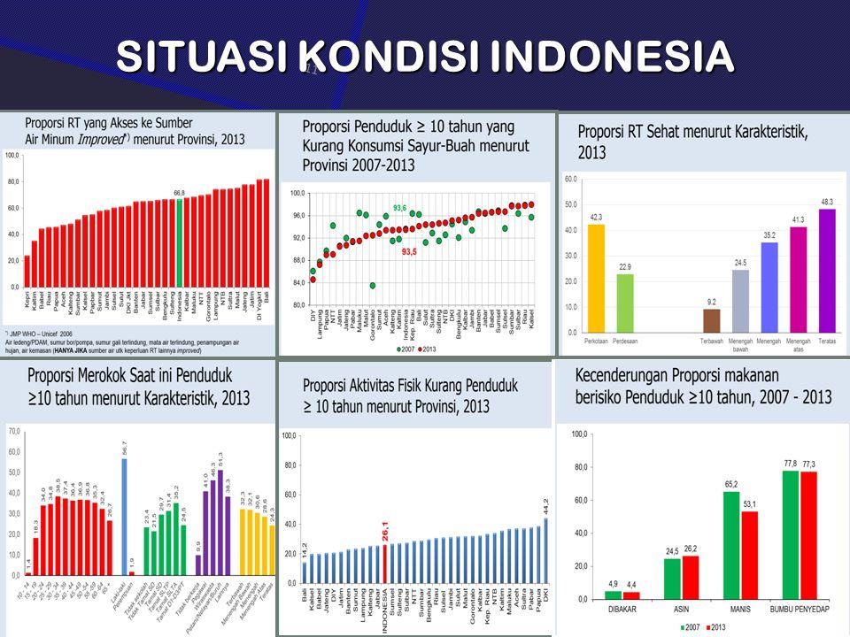SITUASI KONDISI INDONESIA 11