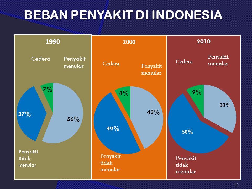 BEBAN PENYAKIT DI INDONESIA 12
