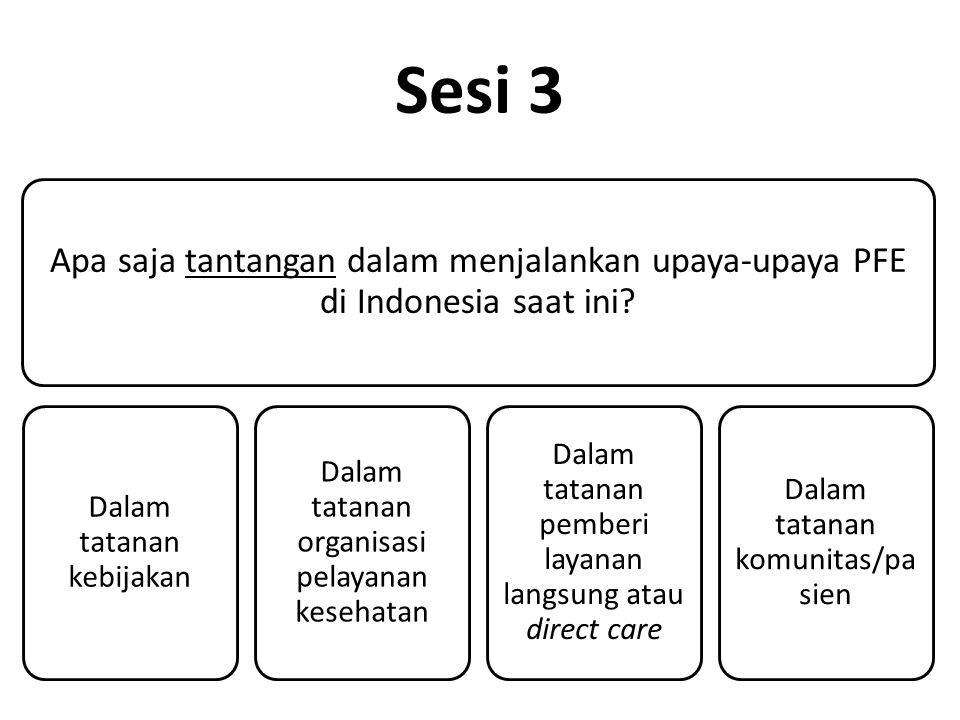 Sesi 3 Apa saja tantangan dalam menjalankan upaya-upaya PFE di Indonesia saat ini.