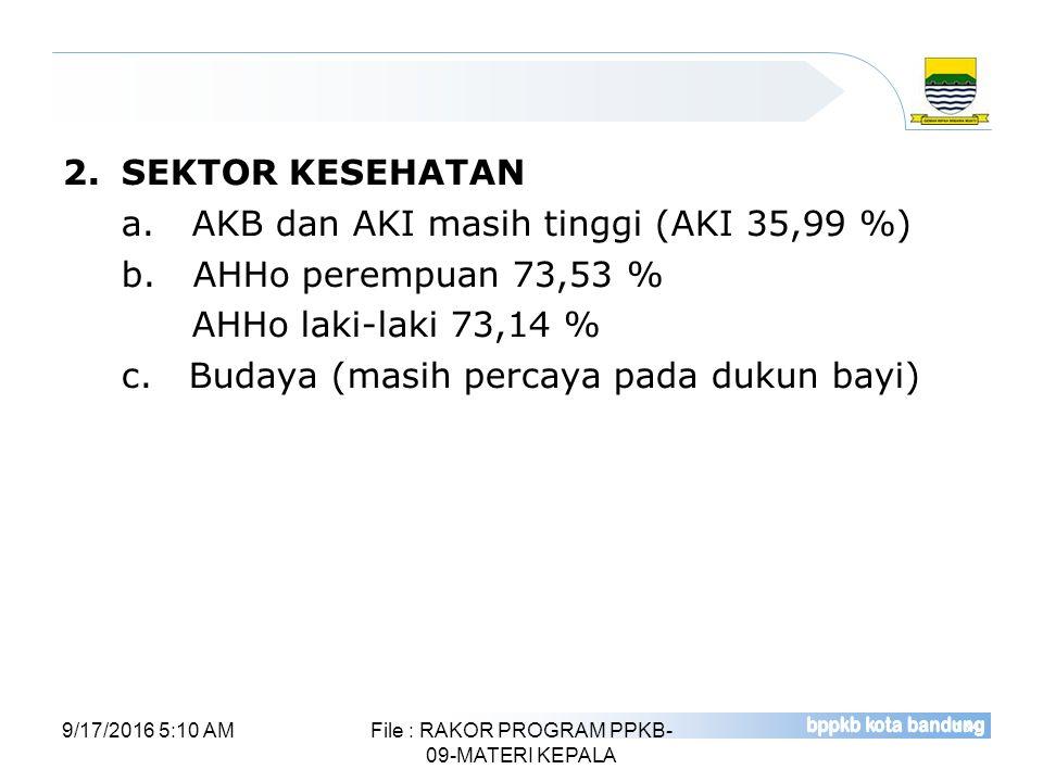 2.SEKTOR KESEHATAN a. AKB dan AKI masih tinggi (AKI 35,99 %) b. AHHo perempuan 73,53 % AHHo laki-laki 73,14 % c. Budaya (masih percaya pada dukun bayi
