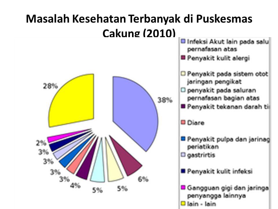 Masalah Kesehatan Terbanyak di Puskesmas Cakung (2010)