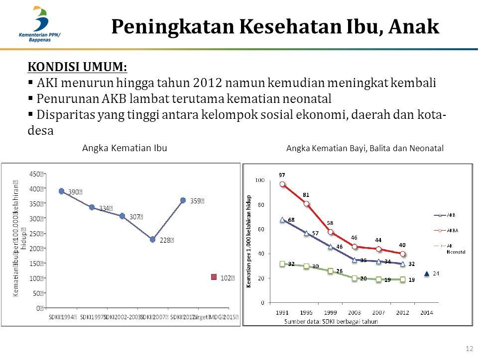 Peningkatan Kesehatan Ibu, Anak 12 KONDISI UMUM:  AKI menurun hingga tahun 2012 namun kemudian meningkat kembali  Penurunan AKB lambat terutama kema
