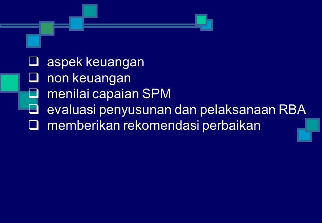  aspek keuangan  non keuangan  menilai capaian SPM  evaluasi penyusunan dan pelaksanaan RBA  memberikan rekomendasi perbaikan