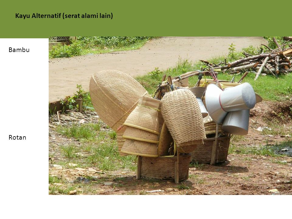 Kayu Alternatif (serat alami lain) Bambu Rotan