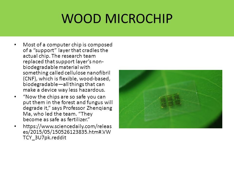 """WOOD MICROCHIP Most of a computer chip is composed of a """"support"""" layer that cradles the actual chip. The research team replaced that support layer's"""