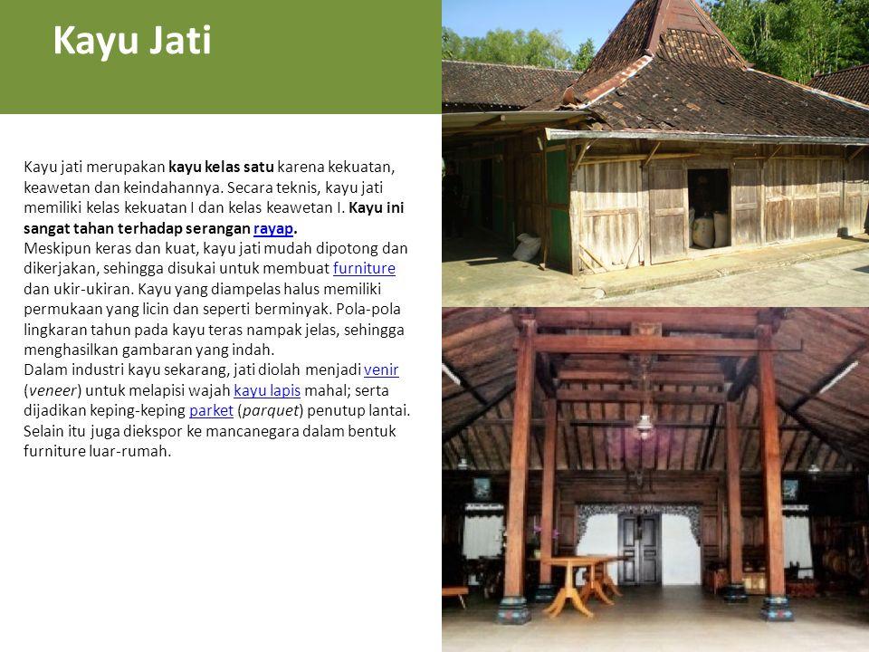 Kayu jati merupakan kayu kelas satu karena kekuatan, keawetan dan keindahannya.