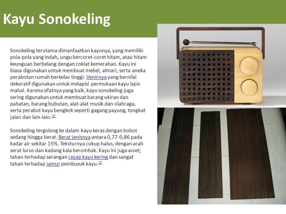Kayu Sonokeling Sonokeling terutama dimanfaatkan kayunya, yang memiliki pola-pola yang indah, ungu bercoret-coret hitam, atau hitam keunguan berbelang dengan coklat kemerahan.