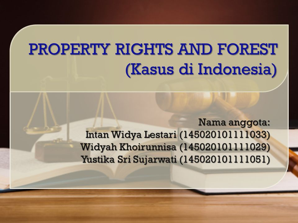 Nama anggota: Intan Widya Lestari (145020101111033) Widyah Khoirunnisa (145020101111029) Yustika Sri Sujarwati (145020101111051) PROPERTY RIGHTS AND FOREST (Kasus di Indonesia)