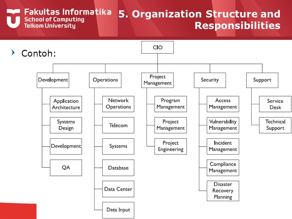 12-CRS-0106 REVISED 8 FEB 2013 5. Organization Structure and Responsibilities Contoh: