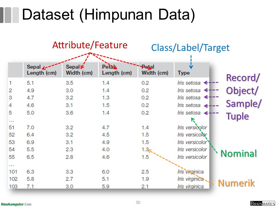 Dataset (Himpunan Data) 30 Class/Label/Target Attribute/Feature Nominal Numerik Record/Object/Sample/Tuple