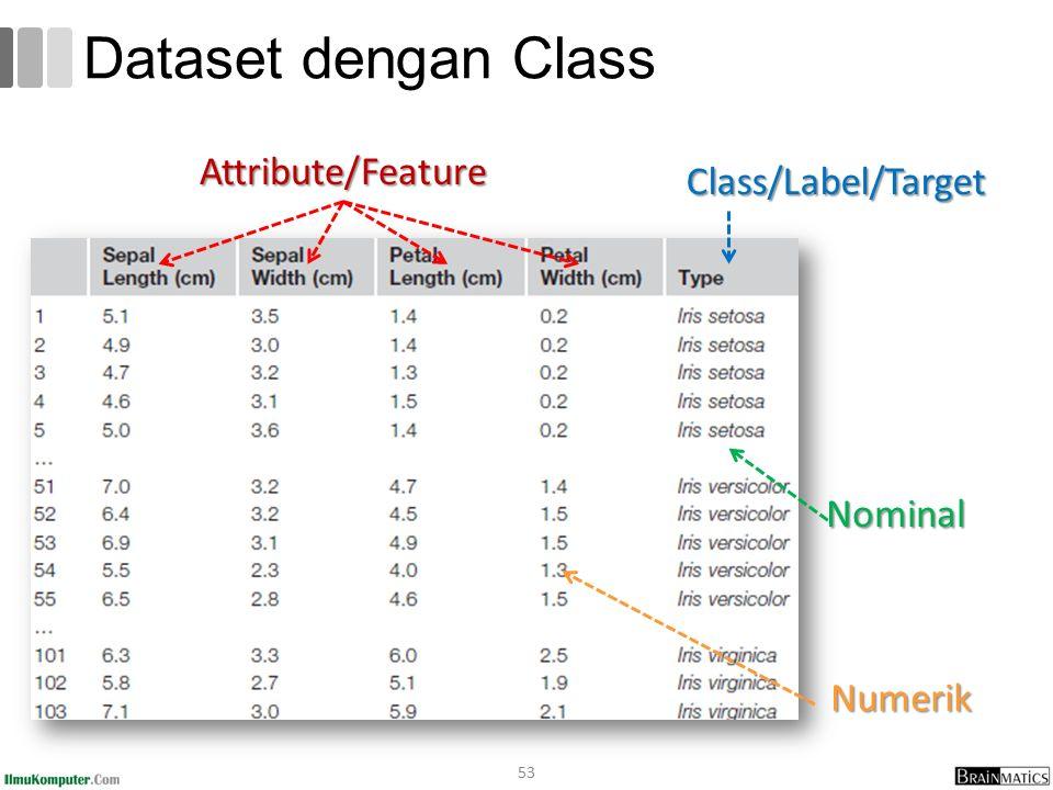 Dataset dengan Class 53 Class/Label/Target Attribute/Feature Nominal Numerik