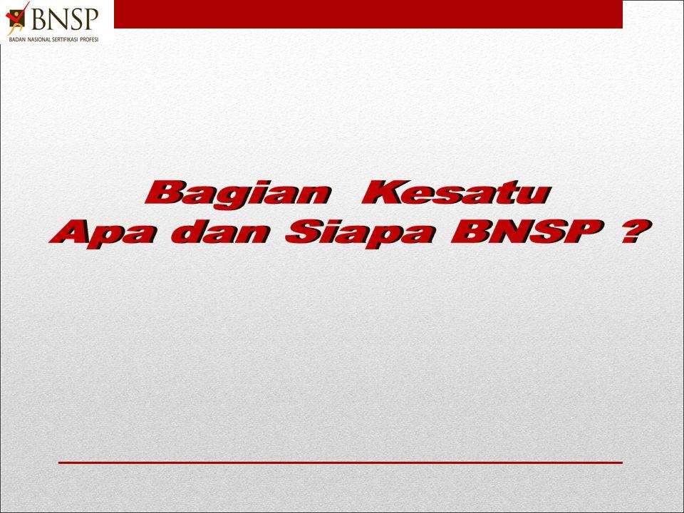 2013 LANGKAH-LANGKAH PEMBENTUKAN LEMBAGA SERTIFIKASI PROFESI Berdasarkan Pedoman BNSP 201, 202, 213, 215, 216 & 217