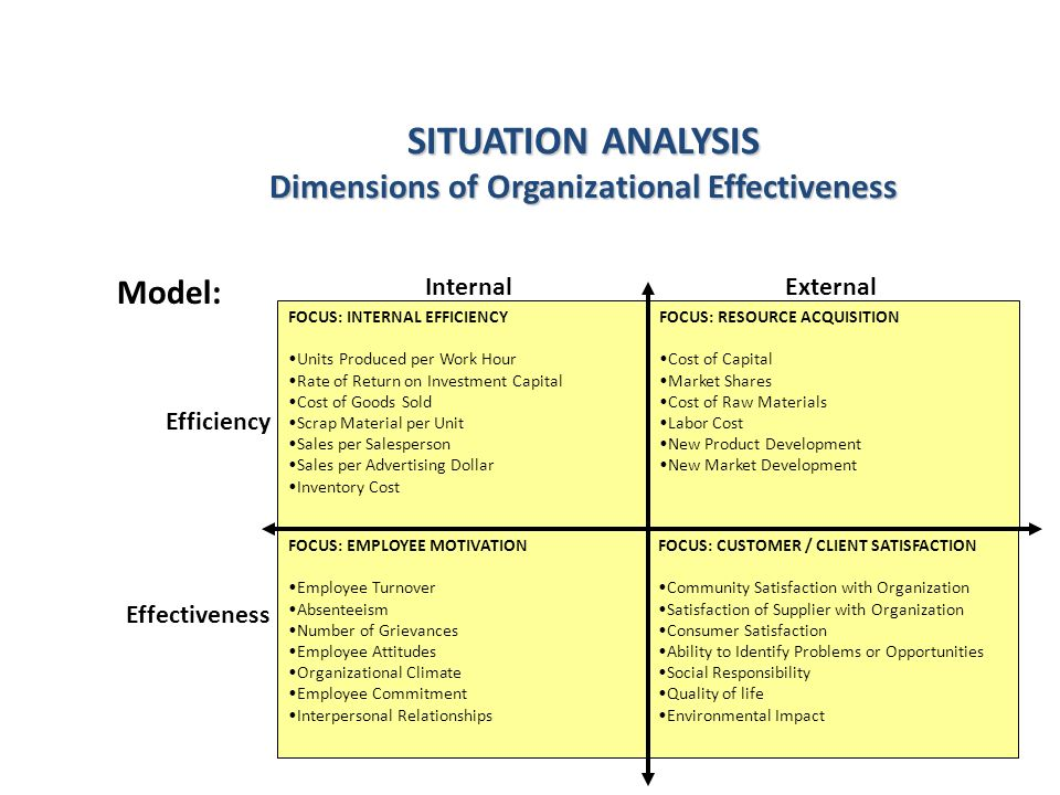 SITUATION ANALYSIS Dimensions of Organizational Effectiveness InternalExternal FOCUS: INTERNAL EFFICIENCY Units Produced per Work Hour Rate of Return