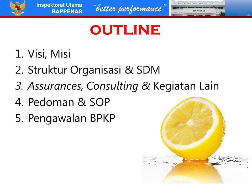 better performance Inspektorat Utama BAPPENAS OUTLINE 1.Visi, Misi 2.Struktur Organisasi & SDM 3.Assurances, Consulting & Kegiatan Lain 4.Pedoman & SOP 5.Pengawalan BPKP 2