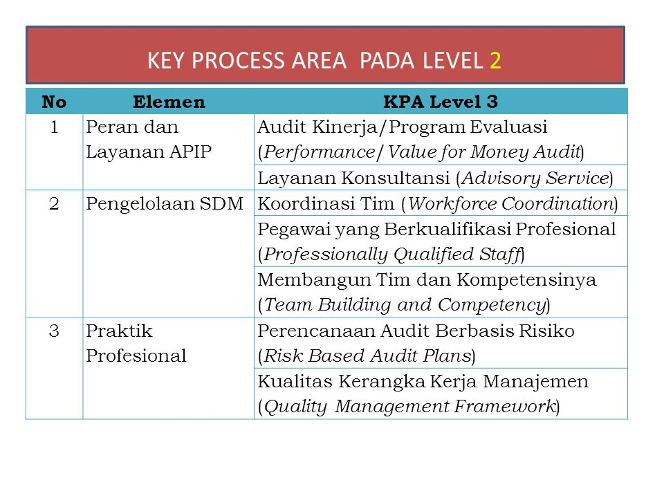 NoElemenKPA Level 3 1 Peran dan Layanan APIP Audit Kinerja/Program Evaluasi ( Performance / Value for Money Audit ) Layanan Konsultansi ( Advisory Service ) 2Pengelolaan SDMKoordinasi Tim ( Workforce Coordination ) Pegawai yang Berkualifikasi Profesional ( Professionally Qualified Staff ) Membangun Tim dan Kompetensinya ( Team Building and Competency ) 3 Praktik Profesional Perencanaan Audit Berbasis Risiko ( Risk Based Audit Plans ) Kualitas Kerangka Kerja Manajemen ( Quality Management Framework ) KEY PROCESS AREA PADA LEVEL 2