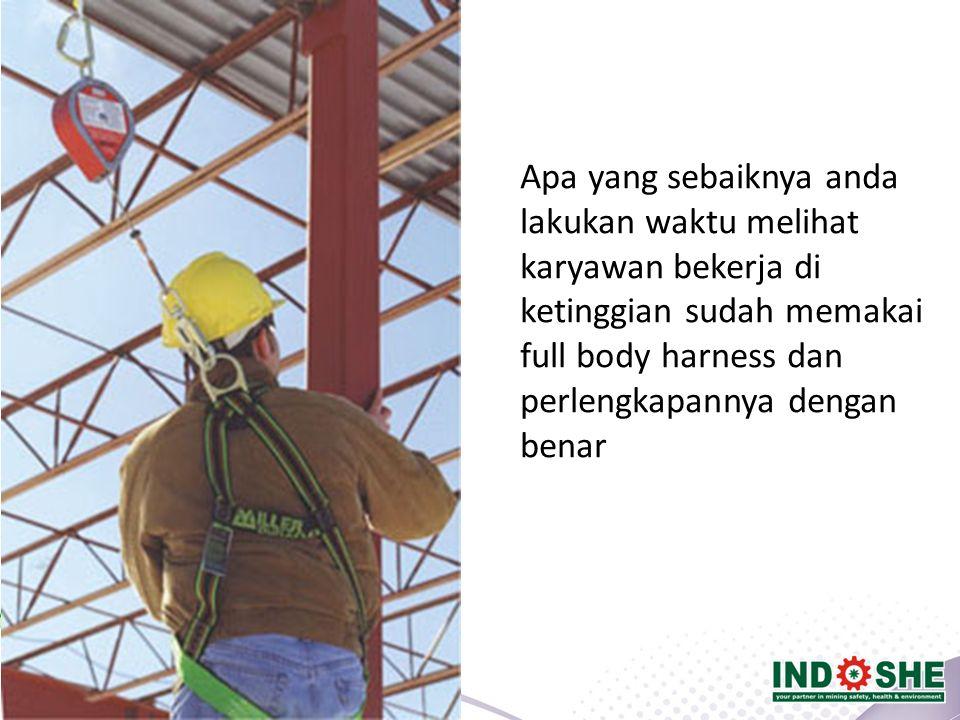 Apa yang sebaiknya anda lakukan waktu melihat karyawan bekerja di ketinggian sudah memakai full body harness dan perlengkapannya dengan benar