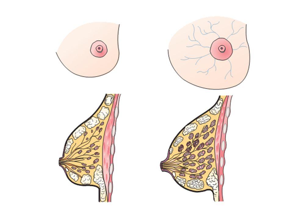 2.Sering buang air kecil.  Tanda ini terjadi pada awal dan akhir kehamilan.