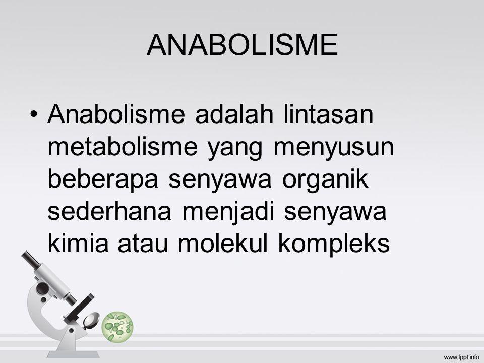 ANABOLISME Anabolisme adalah lintasan metabolisme yang menyusun beberapa senyawa organik sederhana menjadi senyawa kimia atau molekul kompleks