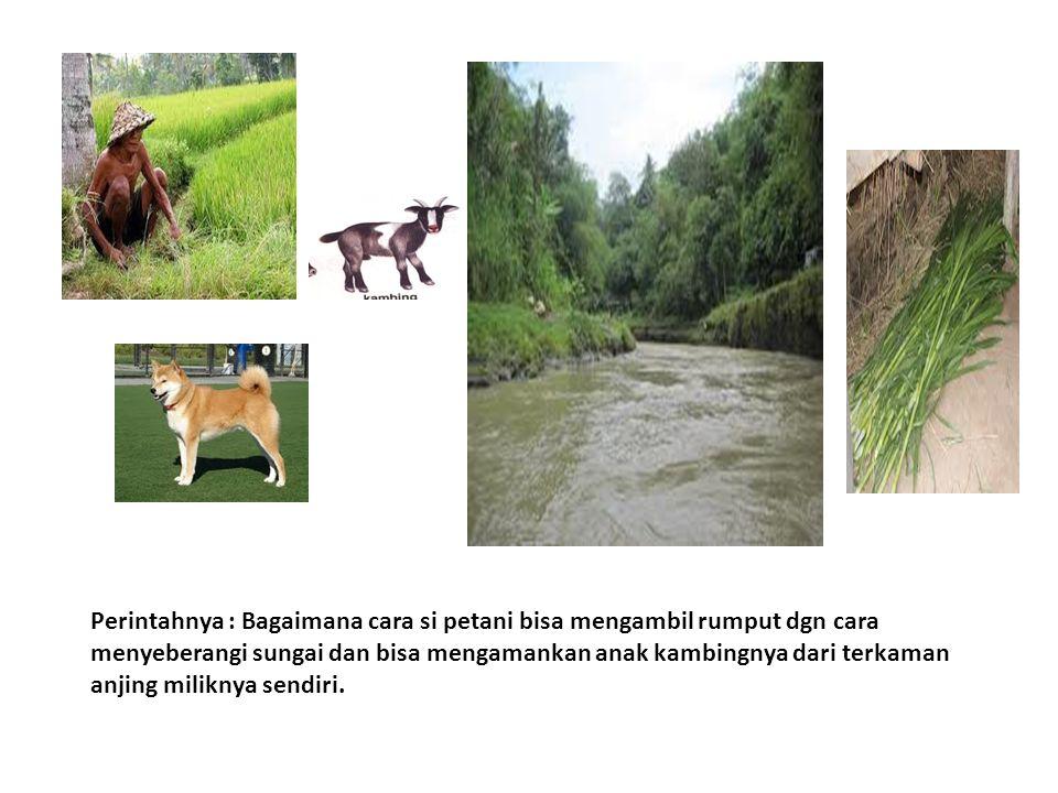 Perintahnya : Bagaimana cara si petani bisa mengambil rumput dgn cara menyeberangi sungai dan bisa mengamankan anak kambingnya dari terkaman anjing mi