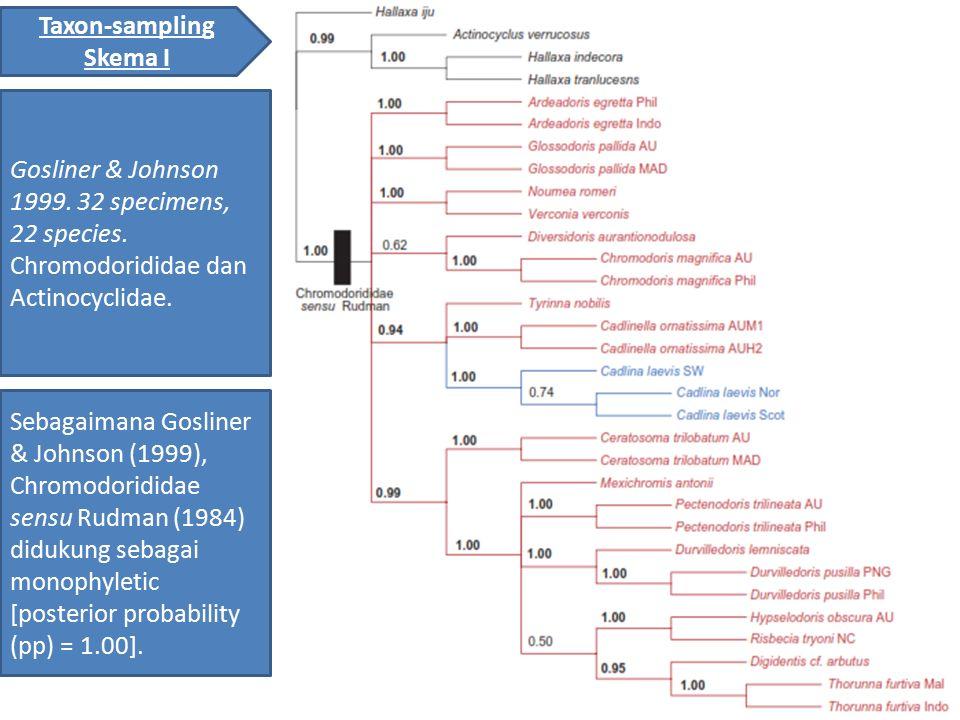 Taxon-sampling Skema I Gosliner & Johnson 1999. 32 specimens, 22 species. Chromodorididae dan Actinocyclidae. Sebagaimana Gosliner & Johnson (1999), C