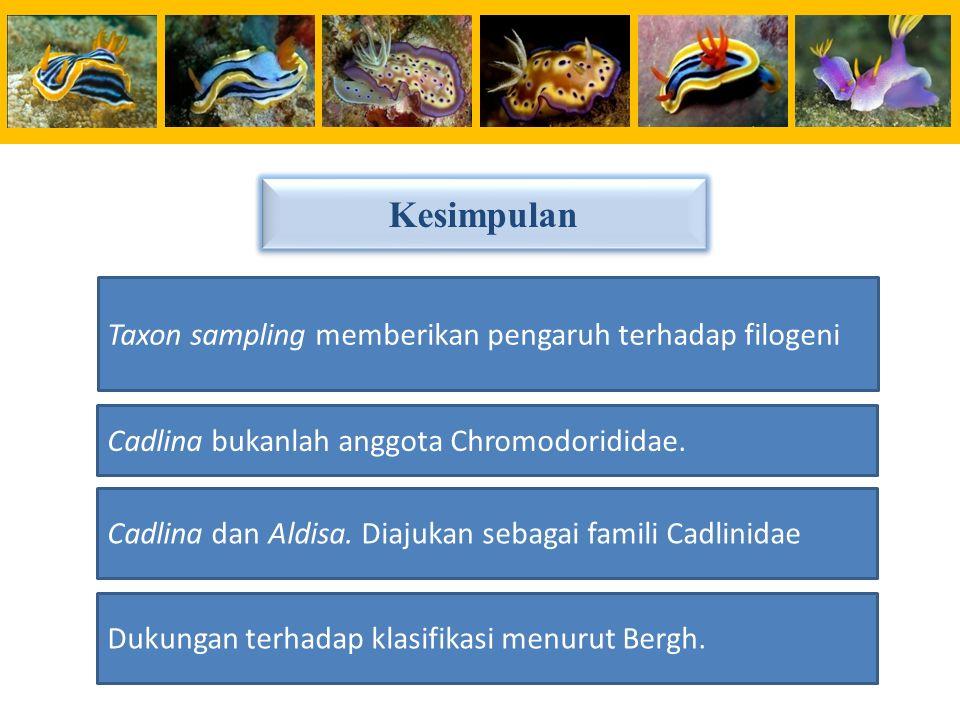 Taxon sampling memberikan pengaruh terhadap filogeni Cadlina bukanlah anggota Chromodorididae. Cadlina dan Aldisa. Diajukan sebagai famili Cadlinidae