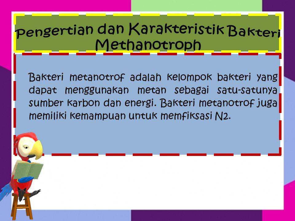 Bakteri Metanotrof memiliki enzim soluble methane monooxygenase (sMMO) yang diketahui mampu mengkatalisis transformasi berbagai polutan.