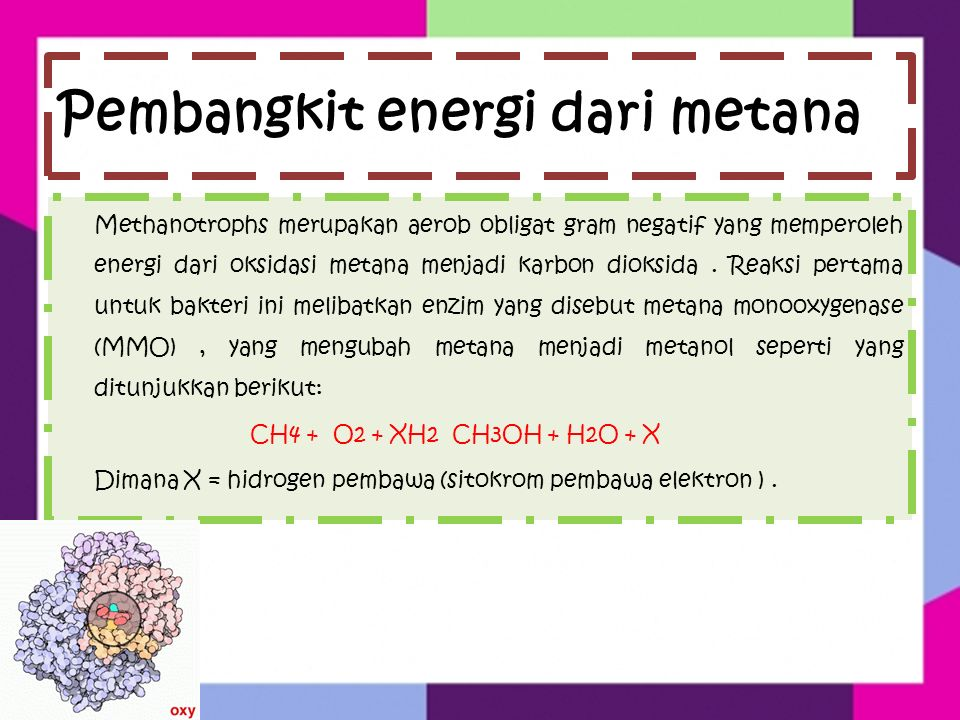 Pembangkit energi dari metana Methanotrophs merupakan aerob obligat gram negatif yang memperoleh energi dari oksidasi metana menjadi karbon dioksida.