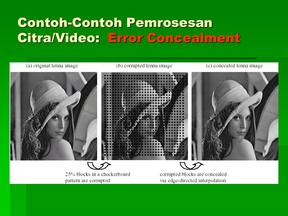 Contoh-Contoh Pemrosesan Citra/Video: Error Concealment