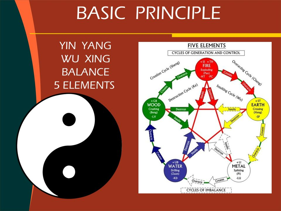 BASIC PRINCIPLE YIN YANG WU XING BALANCE 5 ELEMENTS