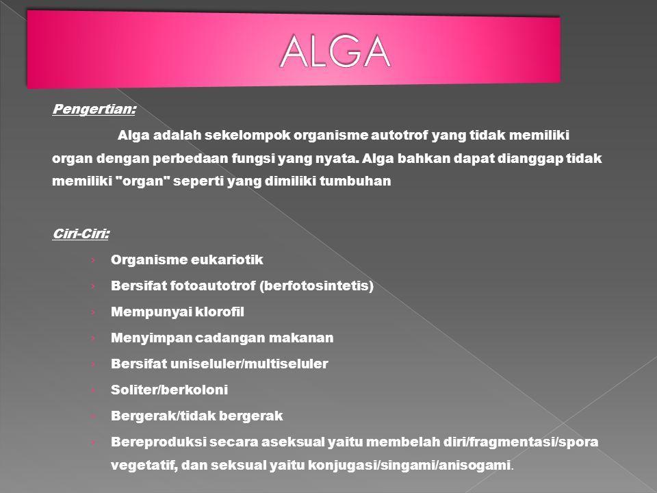 Pengertian: Alga adalah sekelompok organisme autotrof yang tidak memiliki organ dengan perbedaan fungsi yang nyata. Alga bahkan dapat dianggap tidak m