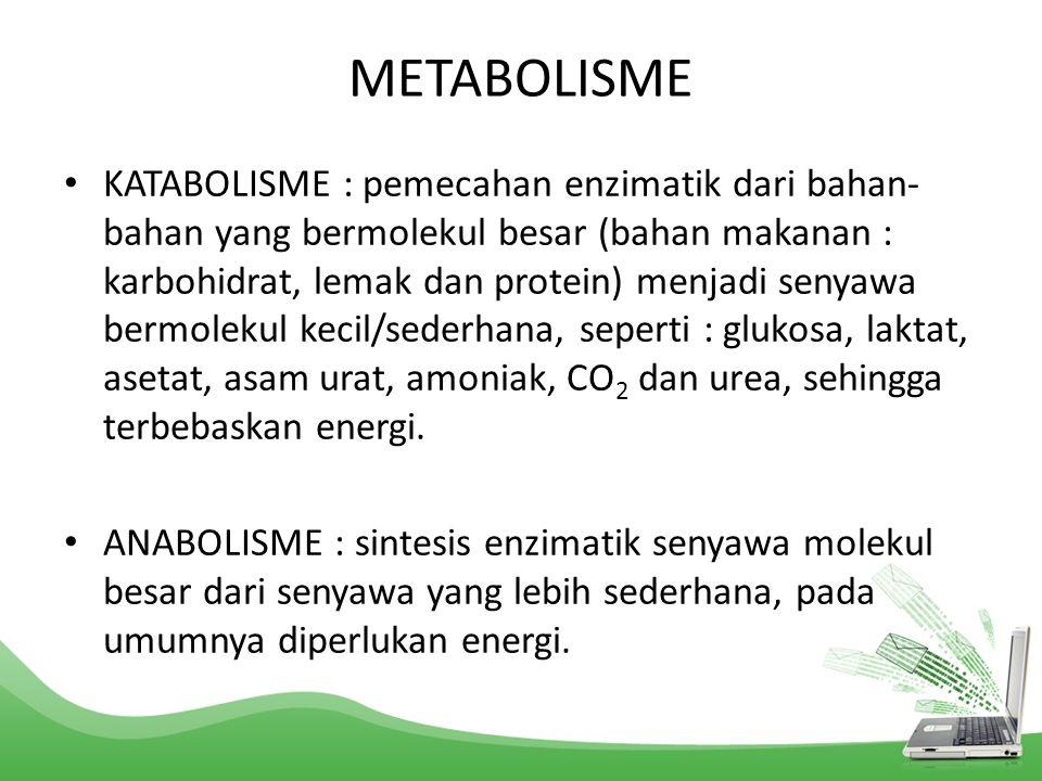 KATABOLISME : pemecahan enzimatik dari bahan- bahan yang bermolekul besar (bahan makanan : karbohidrat, lemak dan protein) menjadi senyawa bermolekul