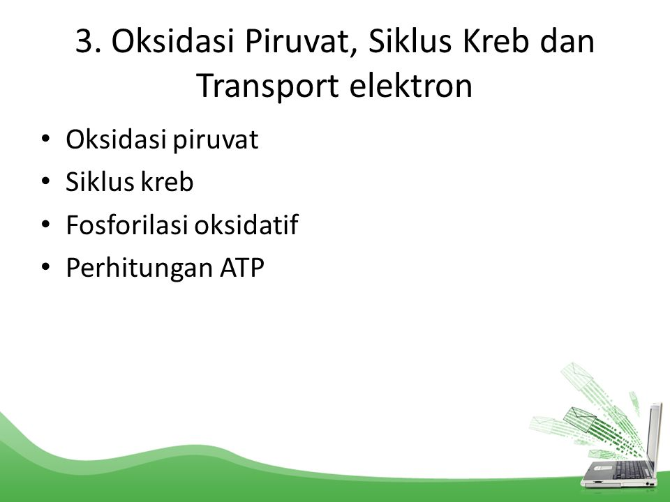 3. Oksidasi Piruvat, Siklus Kreb dan Transport elektron Oksidasi piruvat Siklus kreb Fosforilasi oksidatif Perhitungan ATP