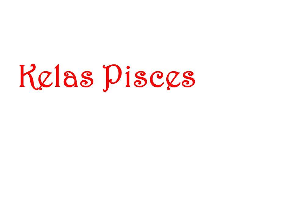 B. Vertebrata Bertulang belakang 1. Pisces Ikan 2.