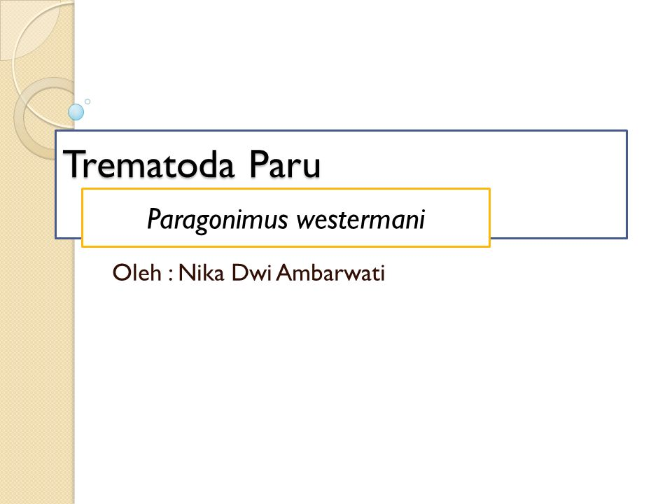 Trematoda Paru Oleh : Nika Dwi Ambarwati Paragonimus westermani