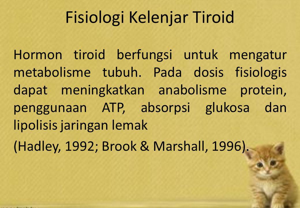 Fisiologi Kelenjar Tiroid Hormon tiroid berfungsi untuk mengatur metabolisme tubuh. Pada dosis fisiologis dapat meningkatkan anabolisme protein, pengg