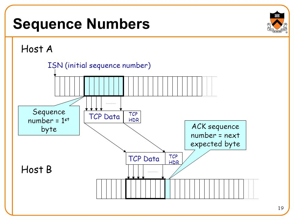19 Sequence Numbers Host A Host B TCP Data TCP HDR TCP HDR ISN (initial sequence number) Sequence number = 1 st byte ACK sequence number = next expected byte