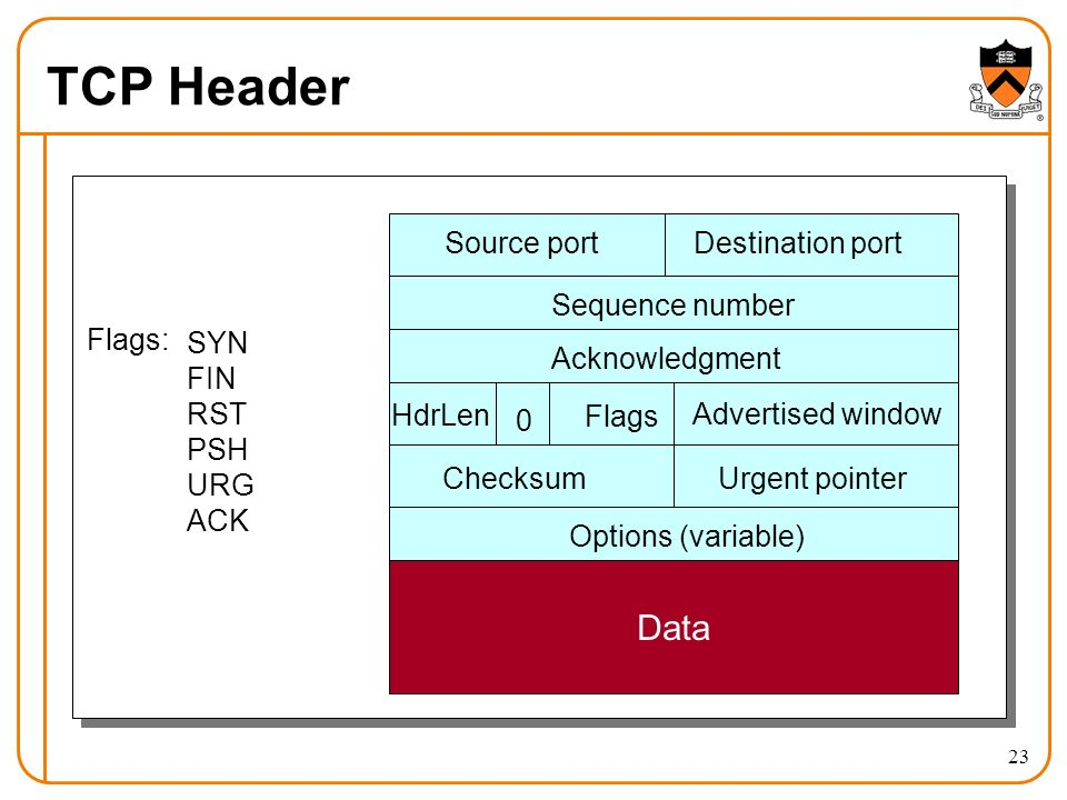 23 TCP Header Source portDestination port Sequence number Acknowledgment Advertised window HdrLen Flags 0 ChecksumUrgent pointer Options (variable) Data Flags: SYN FIN RST PSH URG ACK