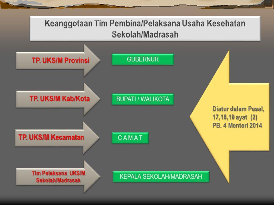 (1)Tugas TP UKS/M provinsi, (1)Tugas TP UKS/M provinsi, sebagaimana dimaksud dalam Pasal 15 huruf b meliputi: a.menyusun rencana kerja pembinaan dan pengembangan UKS/M yang meliputi pendidikan kesehatan, pelayanan kesehatan, dan pembinaan lingkungan sekolah/madrasah sehat; b.menyusun petunjuk pelaksanaan UKS/M; c.mensosialisasikan kebijakan pembinaan dan pengembangan UKS/M di wilayahnya; d.melaksanakan program pembinaan dan pengembangan UKS/M; e.melaksanakan pengembangan ketenagaan TP UKS/M dan sekretariat TP UKS/M; f.menjalin hubungan kerja sama dengan lintas sektor, pihak swasta, dan lembaga swadaya masyarakat, baik di dalam maupun di luar negeri, sesuai ketentuan peraturan perundang- undangan.; g.mendorong TP UKS/M kabupaten/kota untuk menyelenggarakan program BIAS, PHBS, P3K, pelayanan kesehatan gigi dan mulut, dan program kecacingan; h.melaksanakan pemantauan dan evaluasi pelaksanaan program pembinaan dan pengembangan UKS/M; i.membuat laporan berkala kepada TP UKS/M Pusat; dan j.melaksanakan ketatausahaan TP UKS/M provinsi.