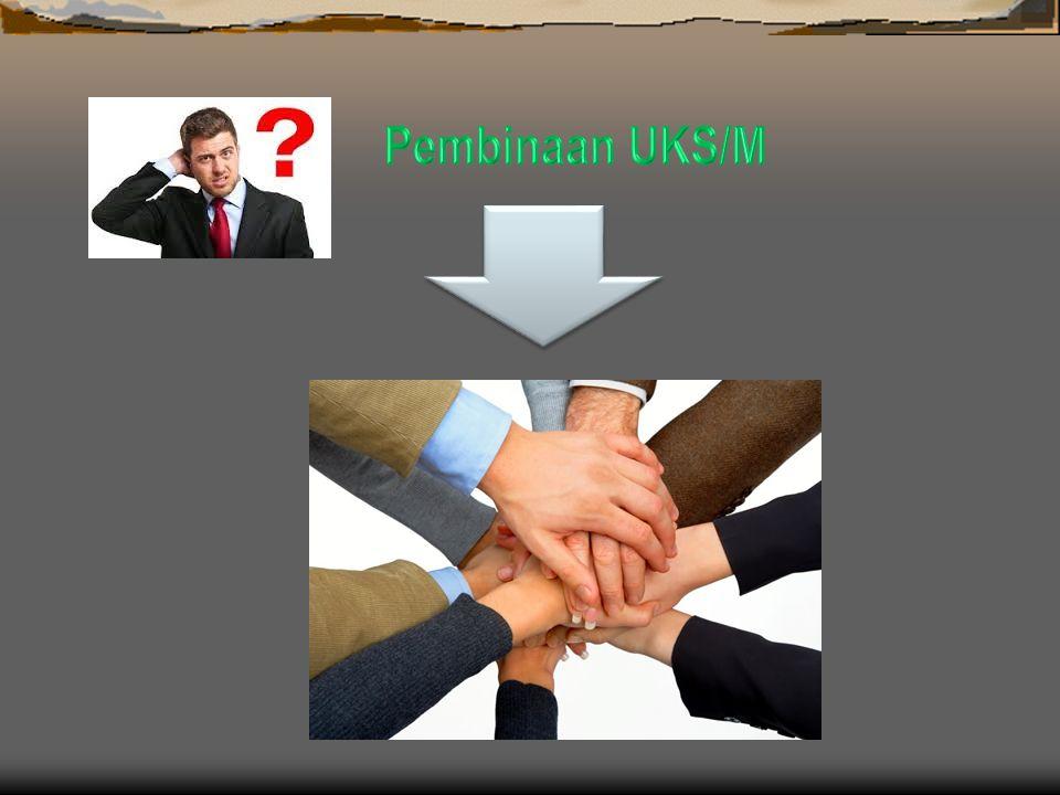 Kecamatan merupakan garda terdepan dalam pengembangan pembinaan dan pelaksanaan UKS/M, oleh karena itu keberhasilan pelaksanaan UKS/M di Kabupaten/Kot
