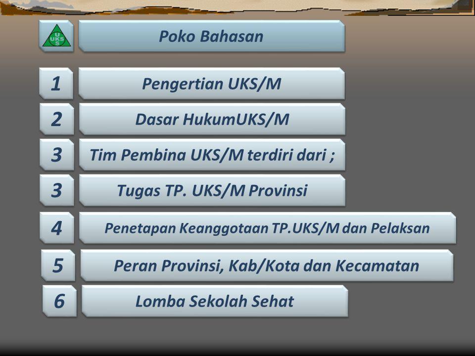 Sosialiasai Indikator - Indikator LSS – UKS/M Pada Tgl. 21 - 22 September 2016 Di Kabupaten Luwu Timur