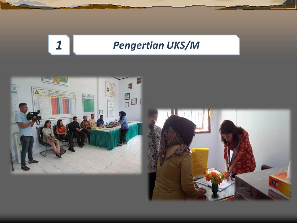 Poko Bahasan Penetapan Keanggotaan TP.UKS/M dan Pelaksan 4 4 Pengertian UKS/M 1 1 Tim Pembina UKS/M terdiri dari ; 3 3 Peran Provinsi, Kab/Kota dan Kecamatan 5 5 Tugas TP.