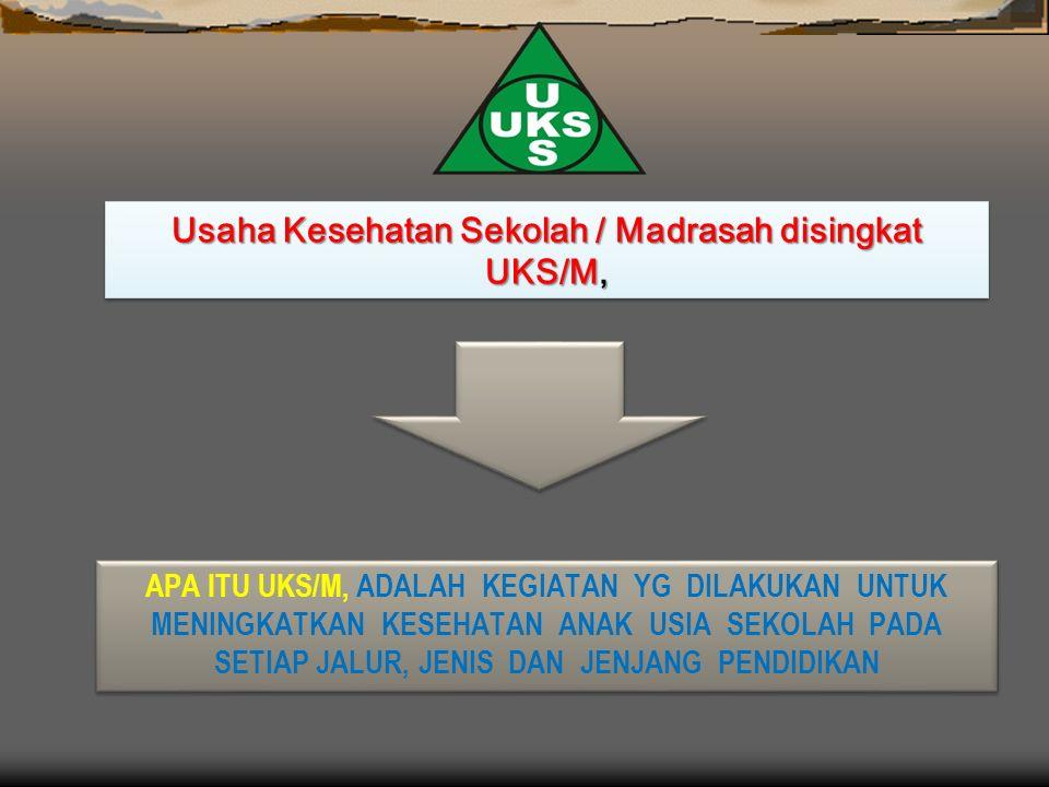 APA ITU UKS/M, ADALAH KEGIATAN YG DILAKUKAN UNTUK MENINGKATKAN KESEHATAN ANAK USIA SEKOLAH PADA SETIAP JALUR, JENIS DAN JENJANG PENDIDIKAN Usaha Kesehatan Sekolah / Madrasah disingkat UKS/M,