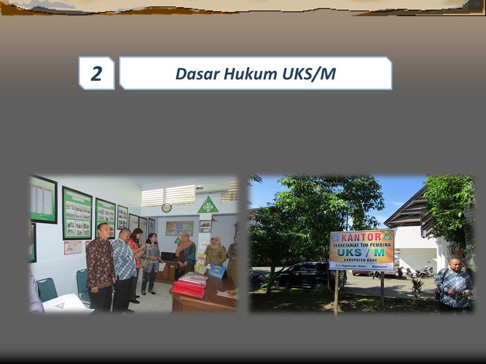 Provinsi Berkewajiban untuk mengkoordinir pelaksanaan UKS/M dan bertanggung jawab memfasilitasi penyelenggaraan UKS/M di semua Kab/Kota yang ada diwilayahnya.