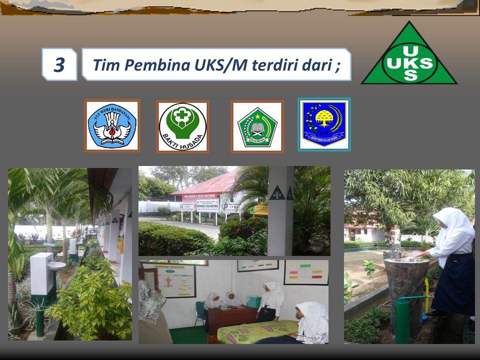 Kecamatan merupakan garda terdepan dalam pengembangan pembinaan dan pelaksanaan UKS/M, oleh karena itu keberhasilan pelaksanaan UKS/M di Kabupaten/Kota sangat dipengaruhi oleh hasil kerja TP.