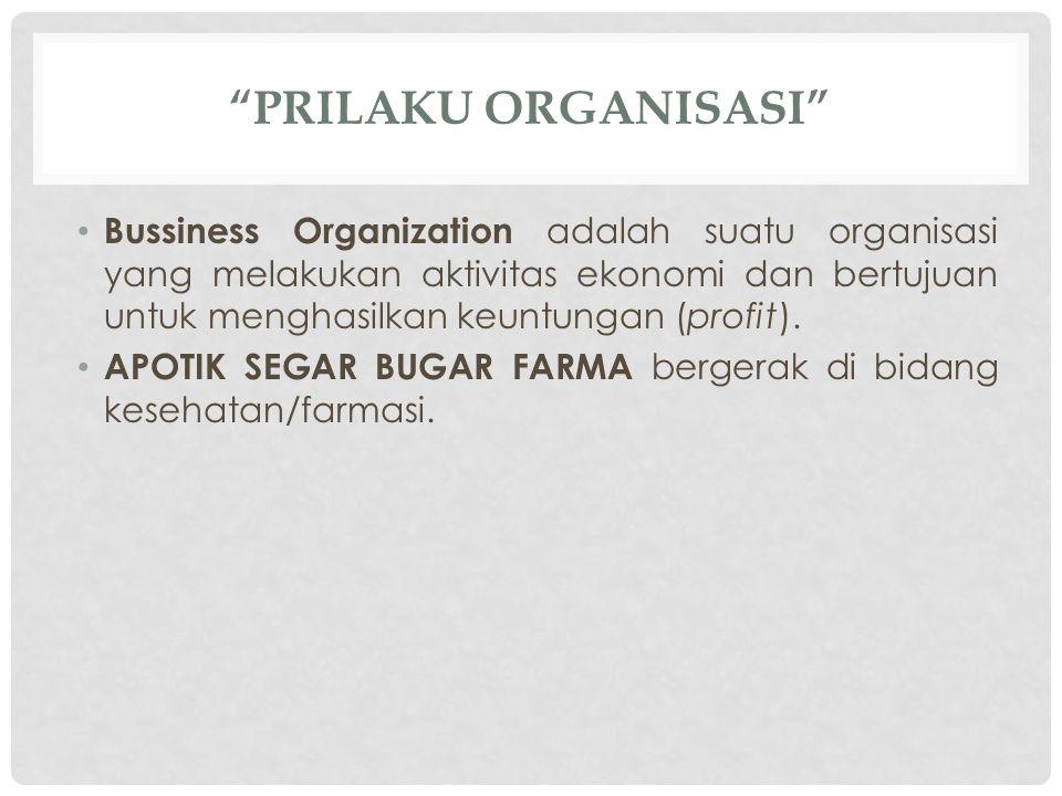 PRILAKU ORGANISASI Bussiness Organization adalah suatu organisasi yang melakukan aktivitas ekonomi dan bertujuan untuk menghasilkan keuntungan (profit).