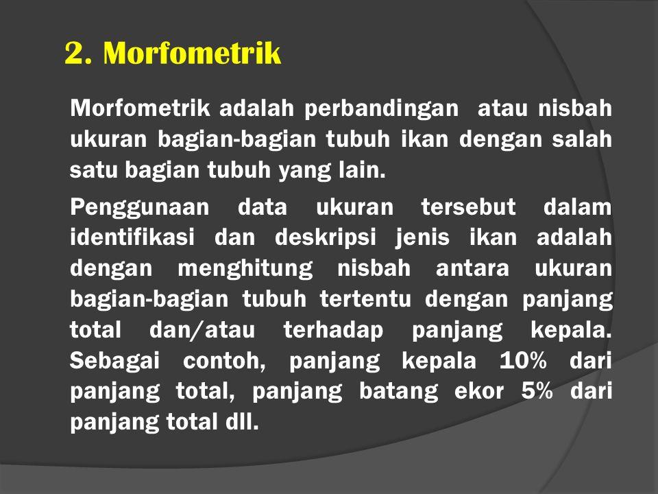 2. Morfometrik Morfometrik adalah perbandingan atau nisbah ukuran bagian-bagian tubuh ikan dengan salah satu bagian tubuh yang lain. Penggunaan data u
