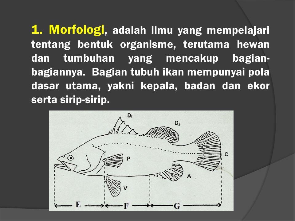 1. Morfologi, adalah ilmu yang mempelajari tentang bentuk organisme, terutama hewan dan tumbuhan yang mencakup bagian- bagiannya. Bagian tubuh ikan me