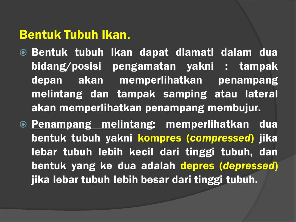SEKIAN Any Question??..
