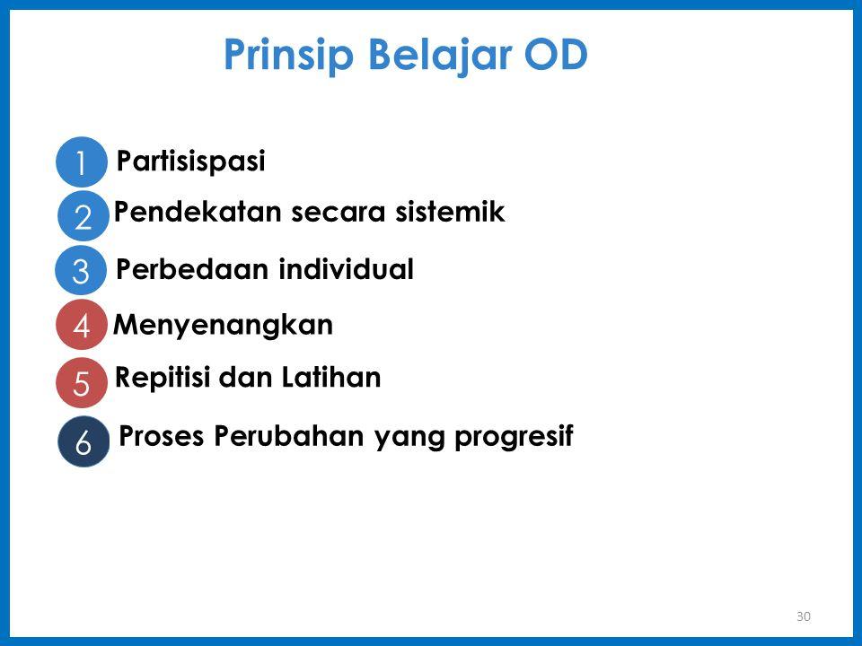 30 Prinsip Belajar OD 1 Partisispasi 2 Pendekatan secara sistemik 3 Perbedaan individual 4 Menyenangkan 5 Repitisi dan Latihan 6 Proses Perubahan yang progresif